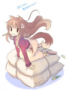Spice & Wolf fan art