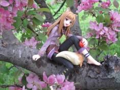 Boku to Holo no Hanami 2 by Razyura – Spice & Wolf 狼と香辛料