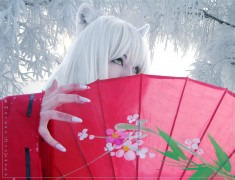 Hanyou InuYasha cosplay by Biosintes on DeviantArt