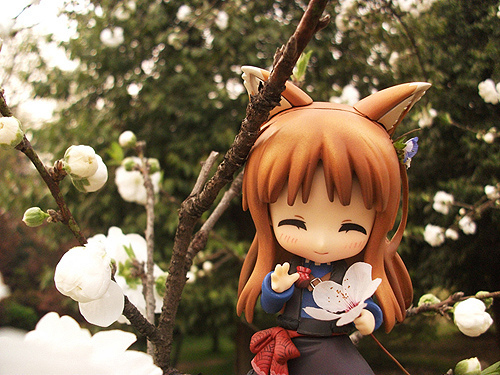 Holo The Wisewolf figure – Spice & Wolf 狼と香辛料