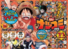 ONE PIECE at Natsukomi 2015