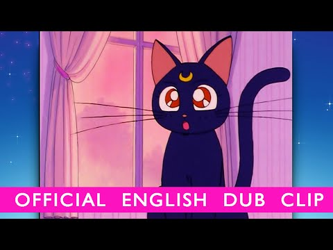 Sailor Moon – OFFICIAL DUB CLIP- Luna Appears! – YouTube video