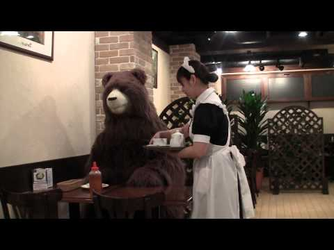This cafe in Japan only serves bears, no humans are allowed! 【くまみこ】ナツ、秋葉原へ行く~メイド喫茶編~ – YouTube