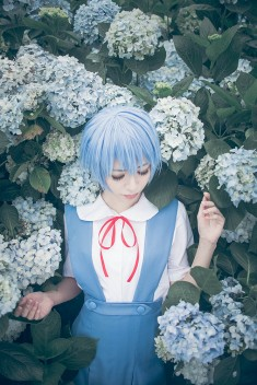 cosplay: YUI as Rei Ayanami of Neon Genesis Evangelion