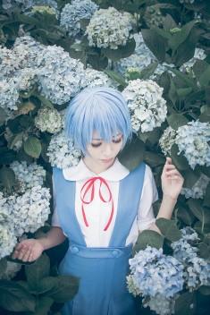 cosplay: YUI as Rei Ayanami of Neon Genesis Evangelion