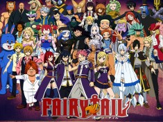 Fairy Tail フェアリーテイル – characters from the anime series