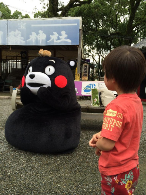 i seem to have misplaced my bunny – Kumamon くまモン