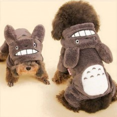 a doggie cosplaying as totoro