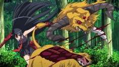 Akame ga Kill! – Monster was killed by Akame