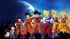 Goku forms