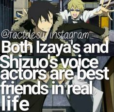 Anime facts durarara!