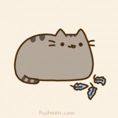 Happy Pusheen Day!!