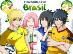 fifa brasil ….