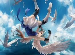 …. bird …