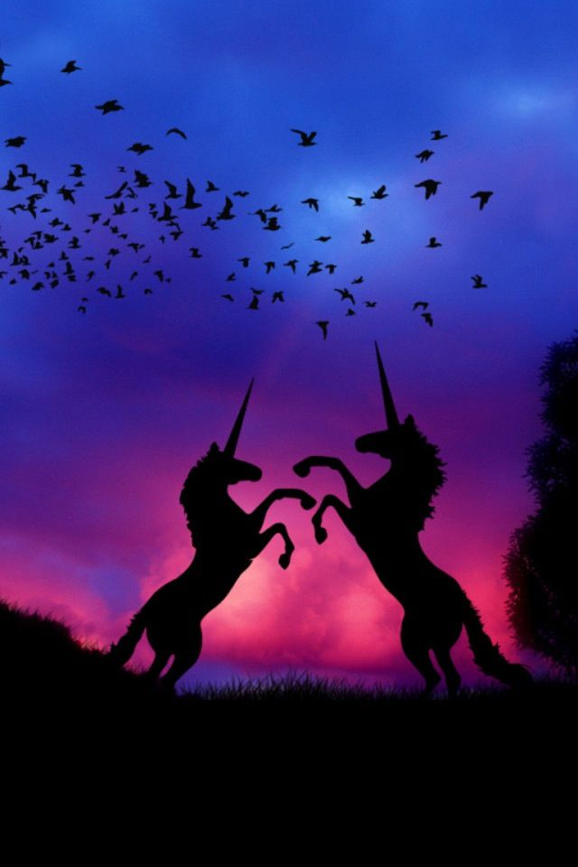 I love unicorns they are so majestic! o.o