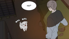 A Good Day to be A Dog~ Webtoon